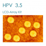 HPV-3.5 LCD-Array Kit