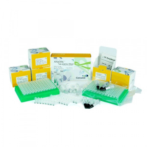 AmpONE™ Taq DNA Polymerase
